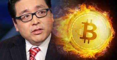 Tom Lee Bitcoin Precio BTC