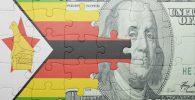 Bitcoin BTC Zimbabwe demanda