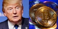 Bitcoin y criptomones BTC Donald Trump